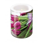 Lantern Decorative Fuchsia Tulips